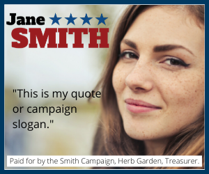 Example of 250x300 pixel political display ad
