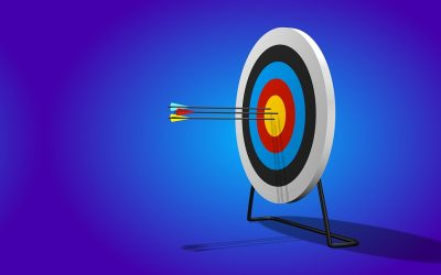 Micro-targeting for Local Political Campaigns