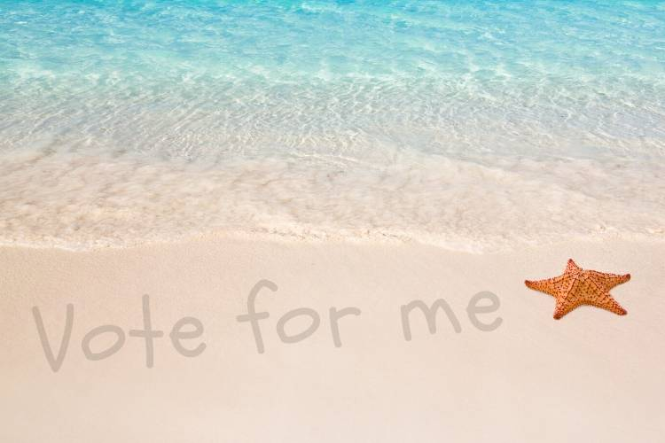 For Political Campaigns, Summertime Is No Time For A Vacation