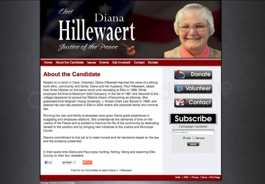 Diana J Hillewaert for Justice of the Peace