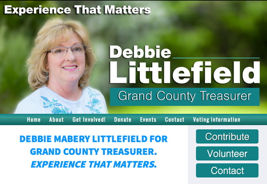 County Treasurer Websites