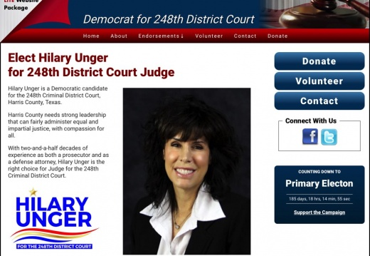 Hilary Unger Democrat for 248th District Court